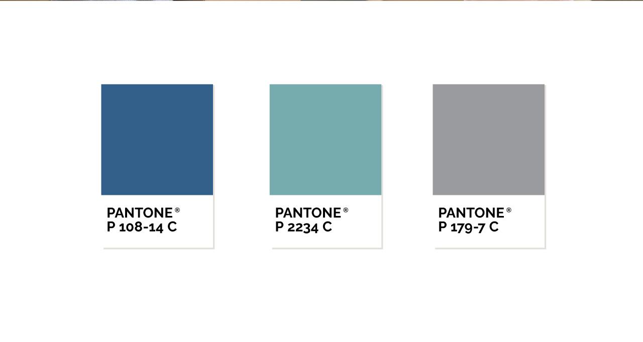 somozabrands_branding_goblue_paleta_colores